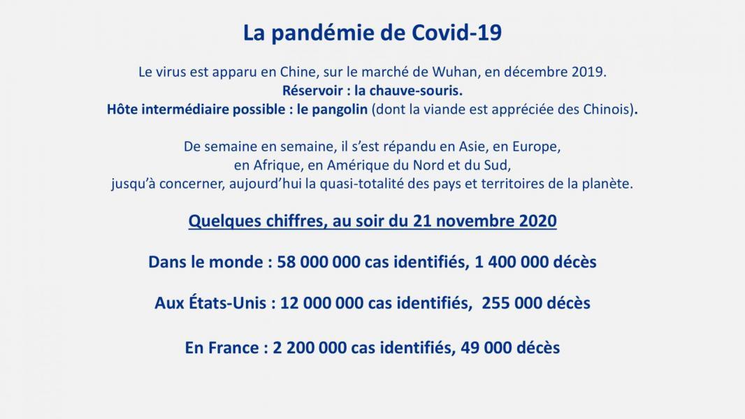 Covid19 7
